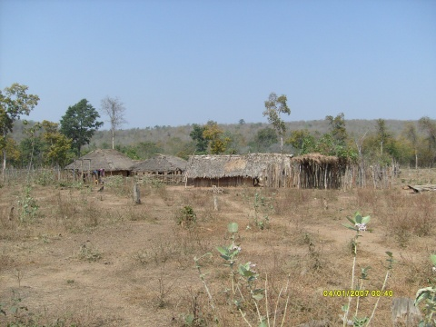 Without infrastructure in the jungle
